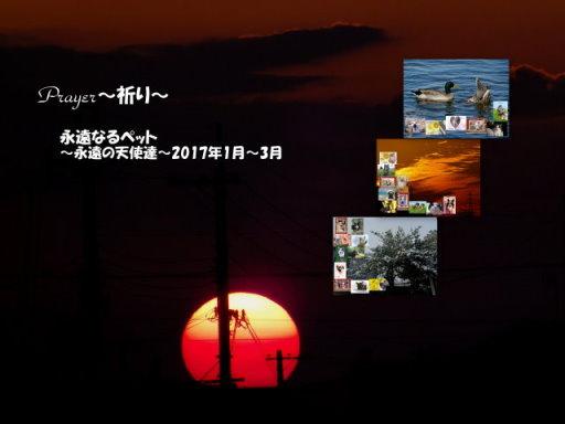 17-123blog.jpg