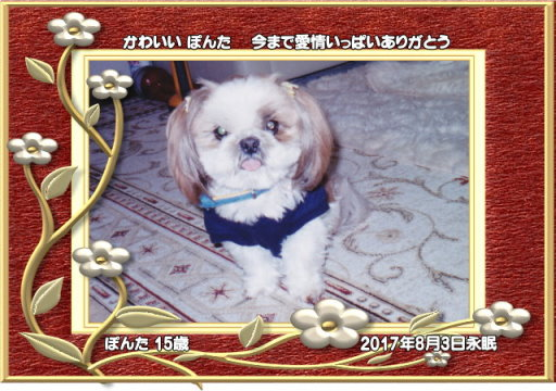 170803ikemoto-ponnta-tyan.jpg