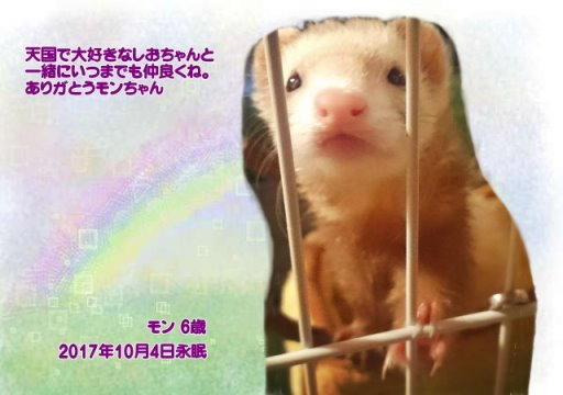 171004okazaki-monn-tyan.jpg