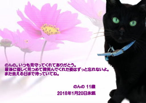 180122okazaki-nonnno-tyan.jpg