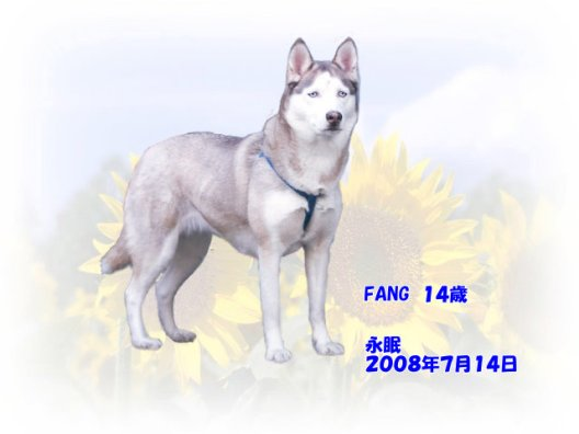fang-tyan080715-03.jpg