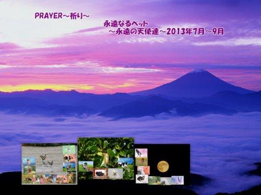 13-789-blog.jpg