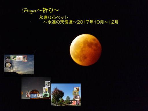 17-101112blog.jpg