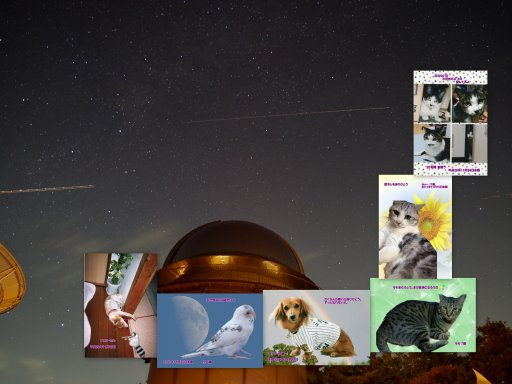 17-11blog.jpg