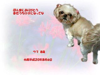 love-tyan080807-04.jpg